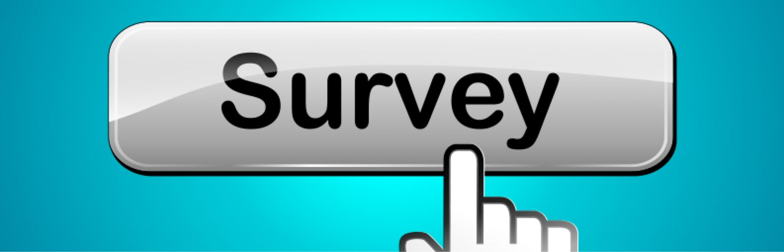 Survey Slider